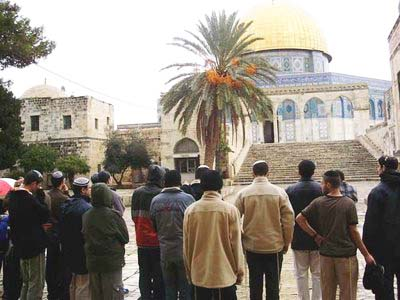 Many Jews search for the Messiah. One day they will find their King on the Temple Mount.