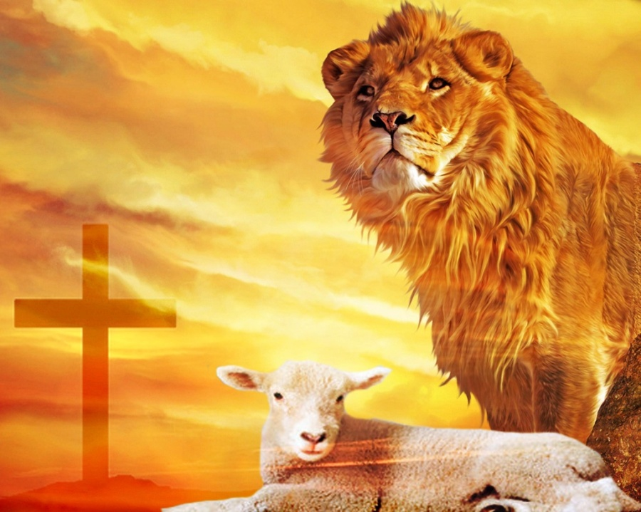Copies of Jesus often rejects either the Lion or the lamb.