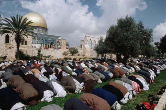 The Muslims put their butts up towards the Dome of the rock, when they pray for Israels destruction.