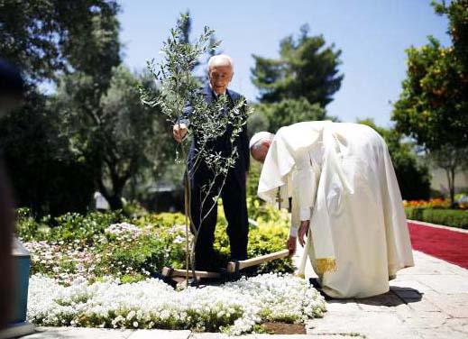 Pope Francis (R) and Israel's President Shimon Peres plant an olive tree after their meeting at the president's residence in Jerusalem May 26, 2014