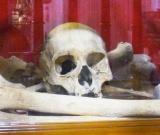 Gordini: Pope canonized exhumed Jewishbones