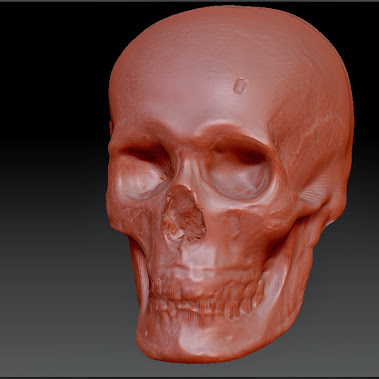 This tre dimentional image of the skull was used by the Catholics to reconstruct the face of the Pope.